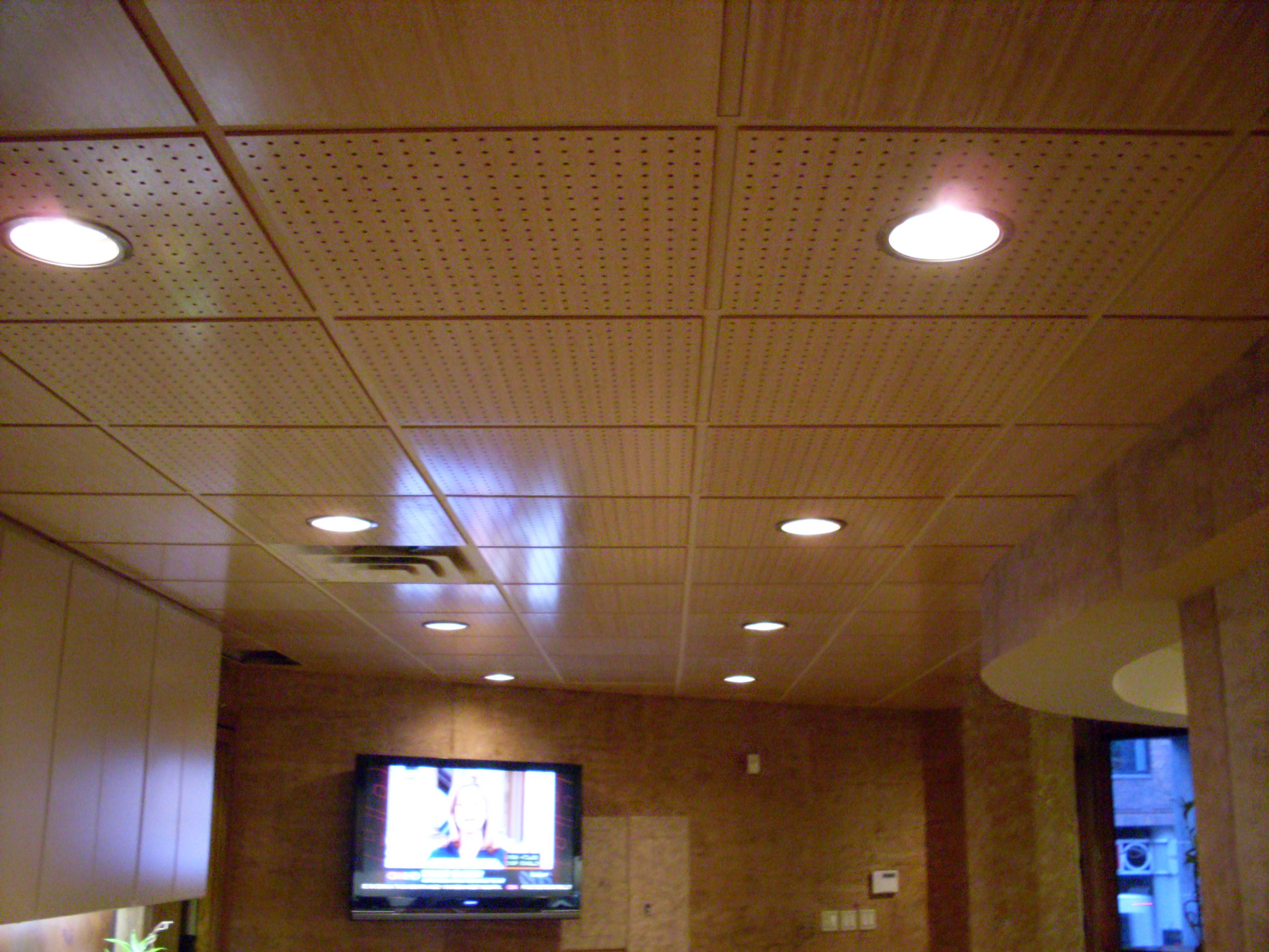 Bamboo Ceiling Tiles Panels Pranksenders